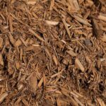 Golden Cedar Mulch