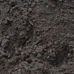 mushroom-compost-blend